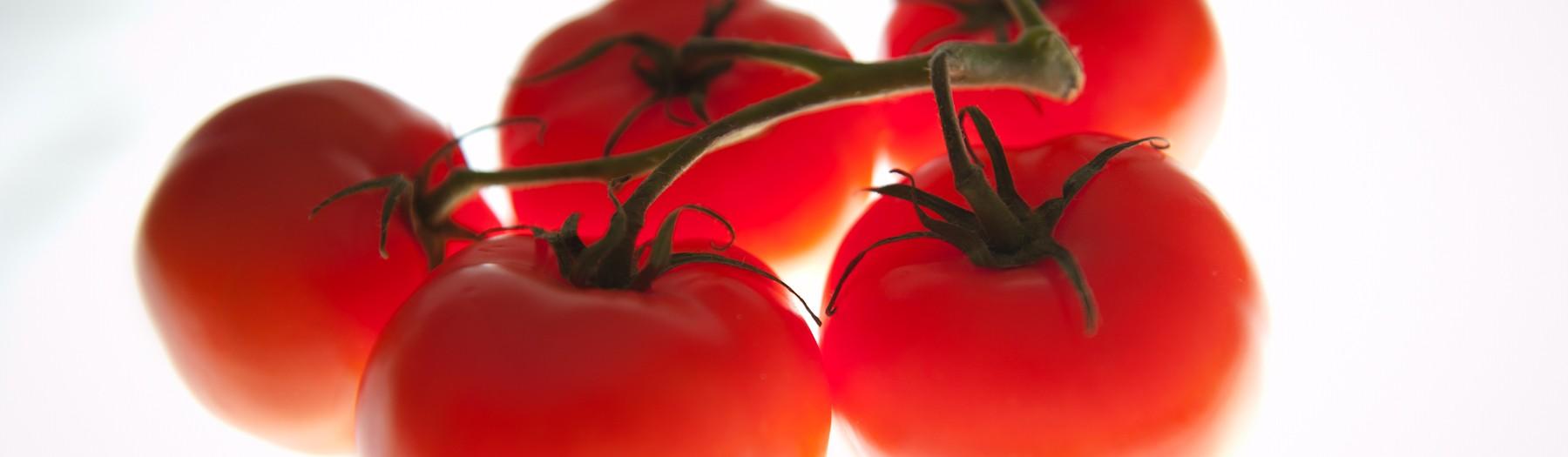 Still life of a tomato...