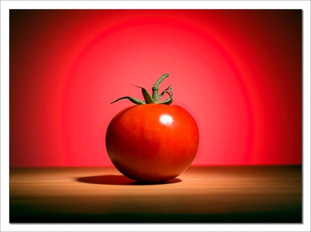 Lonely tomato